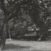 siftarjeva-domacija-dvorisce-del-sedanjega-vrta-2