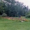 vrt-razvoj-od-60-naprej-10
