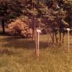 vrt-razvoj-od-60-naprej-2