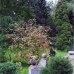 sprehod-skozi-vrt-16