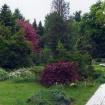 sprehod-skozi-vrt-32