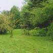 sprehod-skozi-vrt-52