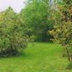 sprehod-skozi-vrt-55