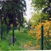 sprehod-skozi-vrt-6