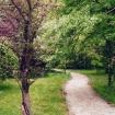 sprehod-skozi-vrt-61