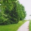 sprehod-skozi-vrt-65