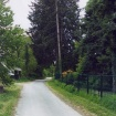 sprehod-skozi-vrt-7