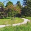 sprehod-skozi-vrt-70