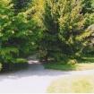 sprehod-skozi-vrt-73