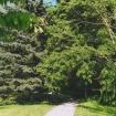 sprehod-skozi-vrt-75