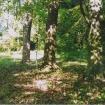 sprehod-skozi-vrt-84