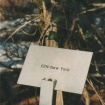 sprehod-skozi-vrt-88