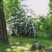 sprehod-skozi-vrt-94