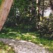 sprehod-skozi-vrt-95