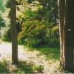 sprehod-skozi-vrt-98